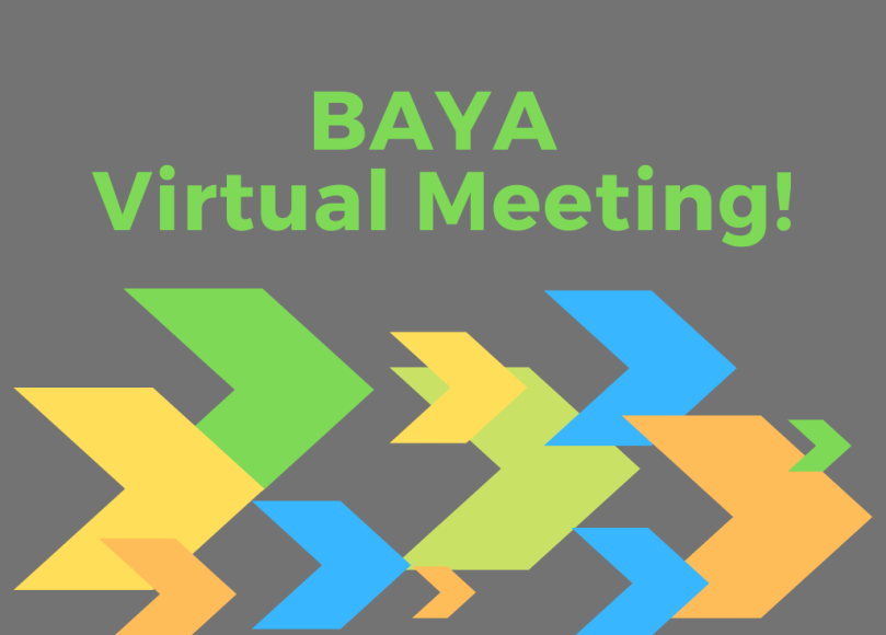 BAYA Virtual Meeting